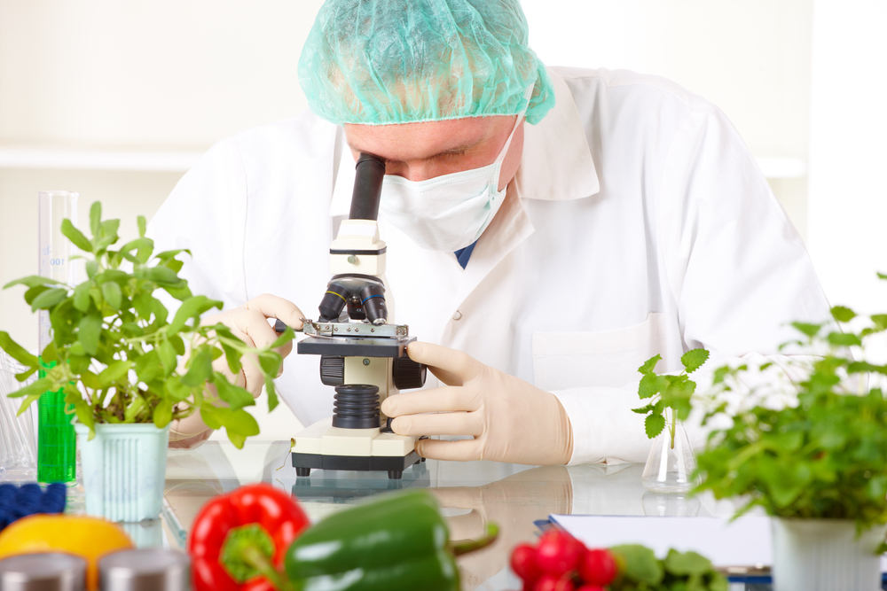 Как проводится экспертиза продуктов питания?
